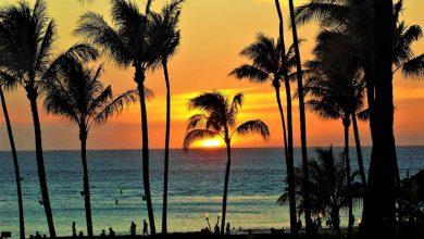 Photo of Trip to Hawaii